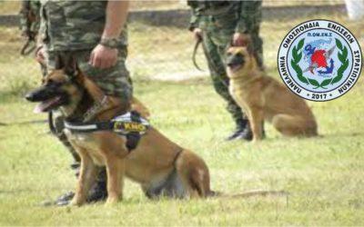 ΠΟΜΕΝΣ:Υπηρεσίες Συνοδών Στρατιωτικά Εκπαιδευομένων Σκύλων (ΣΣΕΣ)